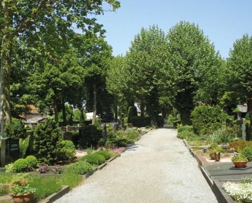 Friedhof Bensheim Mitte